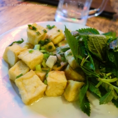 Light Fried Tofu with Scallion (Dau phu tam hanh)