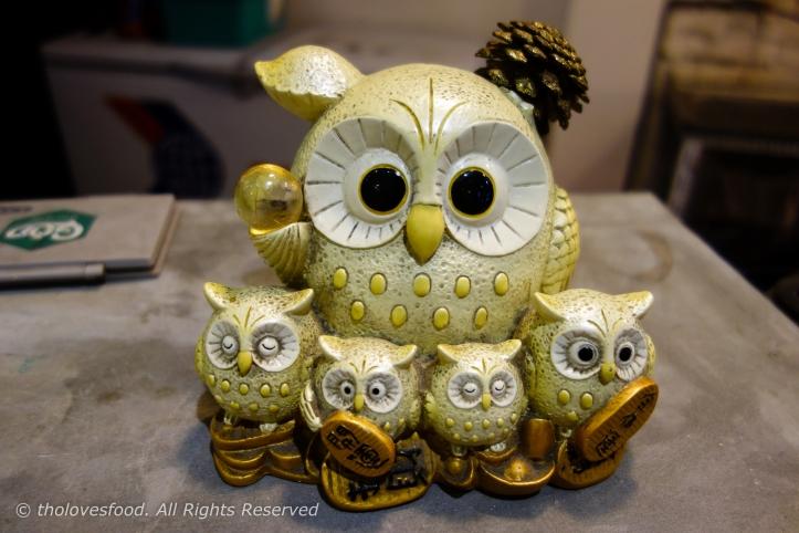 Super Cute Owl!