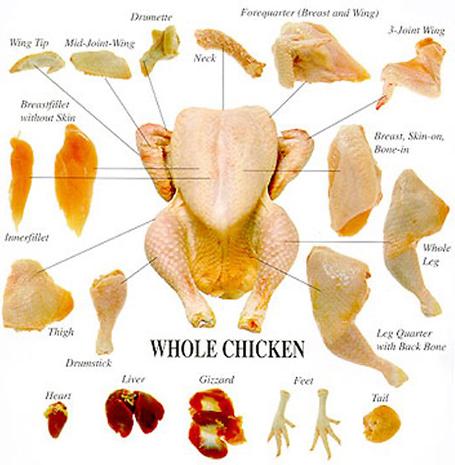 chicken_chart